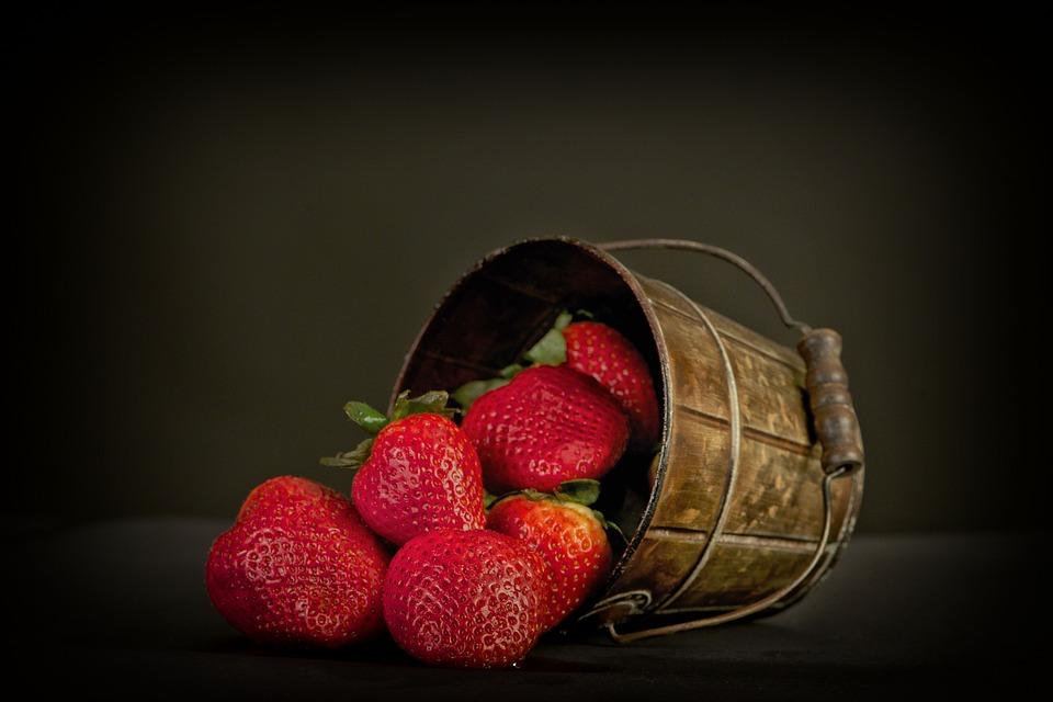 Standard management alimentar