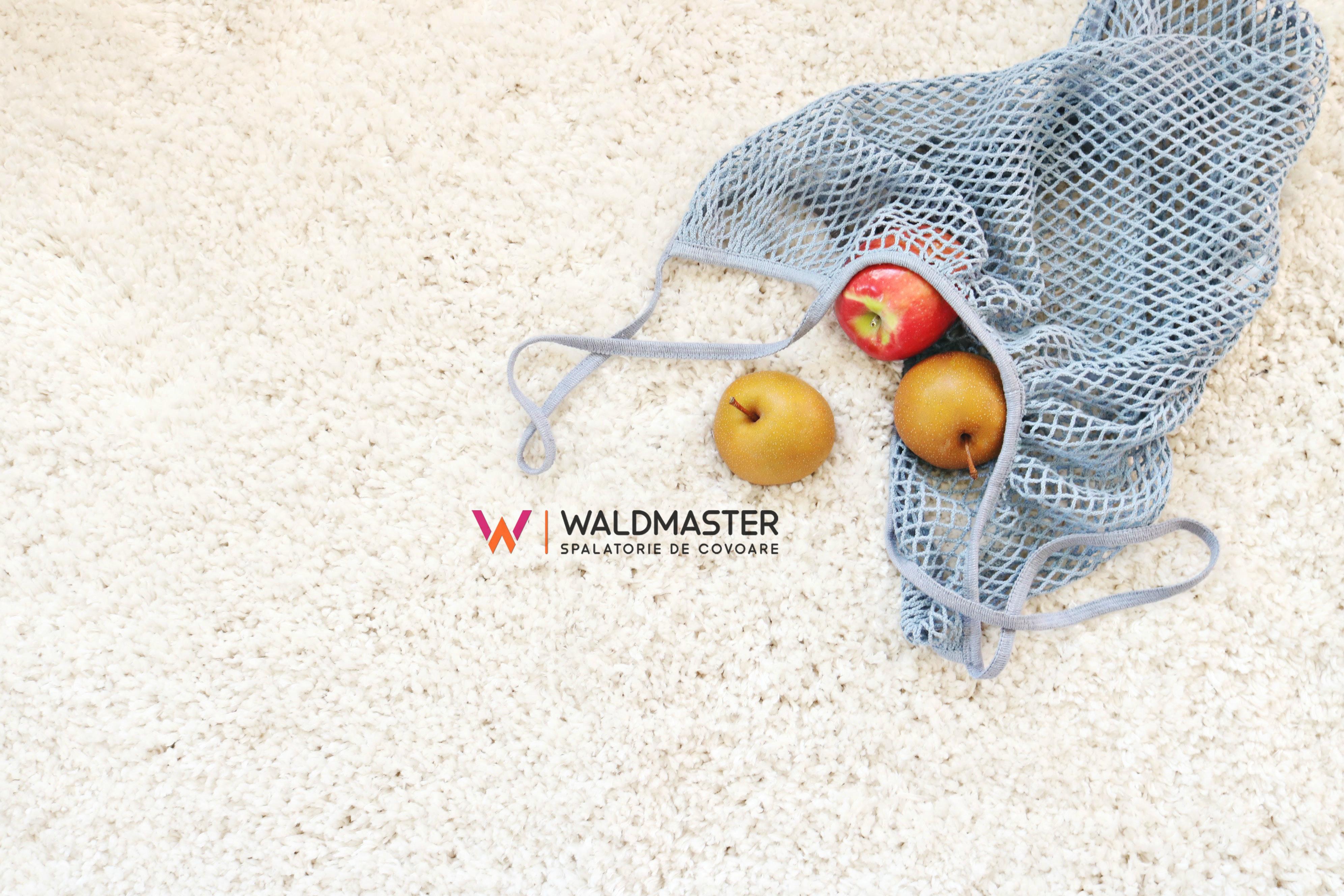 Spalatoria de covoare Waldmaster