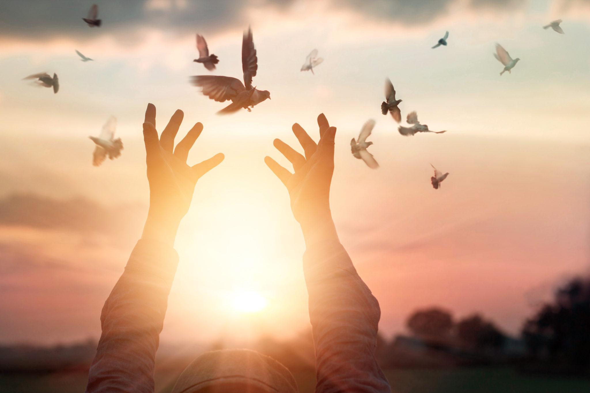 7- 10 Iertarea - calea spre fericire